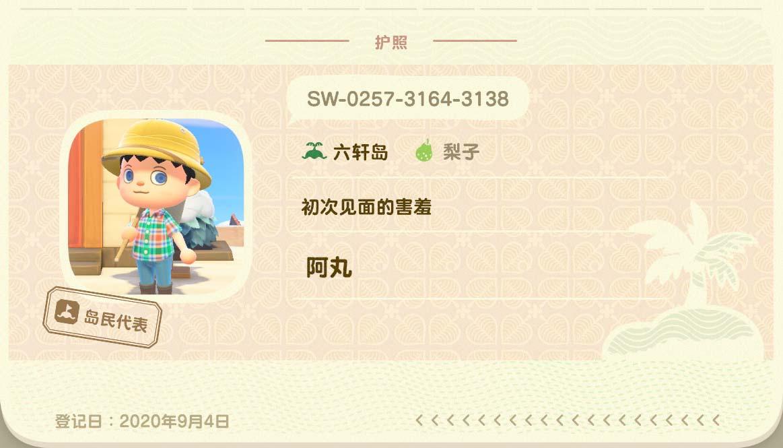 Nintendo Switch Online Animal Crossing:New Horizons Passport